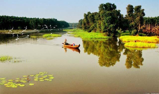 Sông nước vùng Đồng Tháp Mười