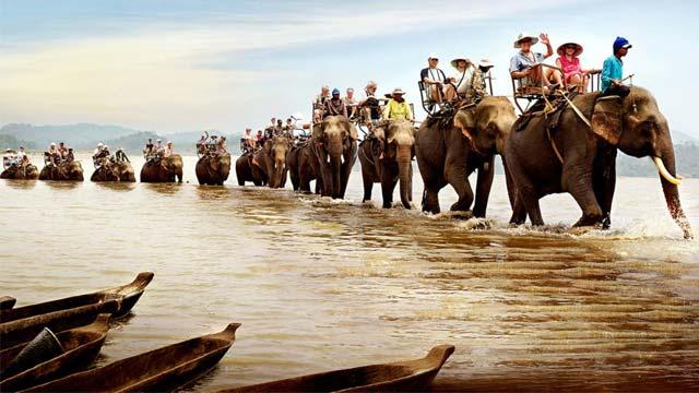 Cưỡi voi vượt sông Đắk Krông khi du lịch Buôn Đôn - Du lịch năm châu