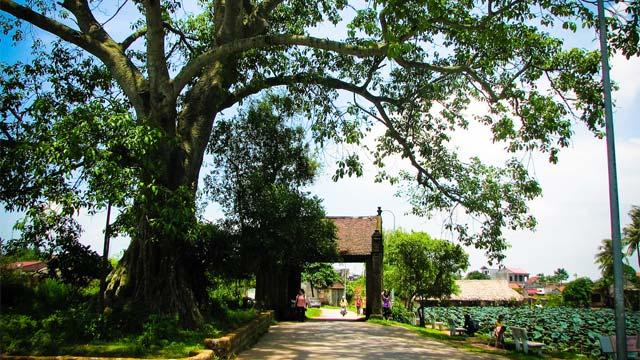 Làng cổ Đường Lâm - Địa điểm du lịch ngoại thành Hà Nội - Du hí đó đây