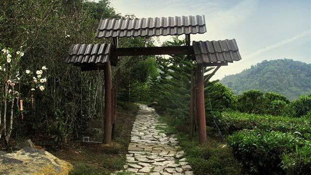 Đường lên chùa Linh Quy Pháp Ấn - Du lịch năm châu