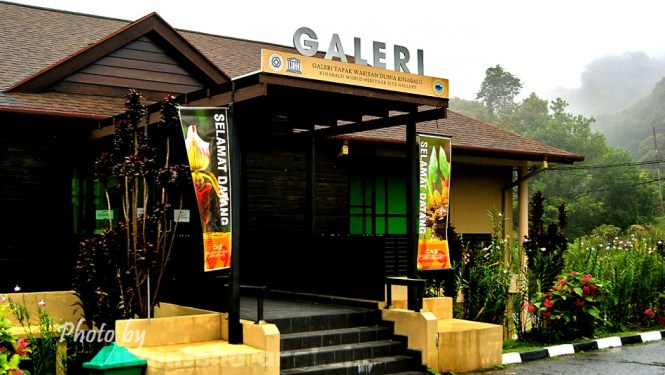 Kinabalu Park Photography 5