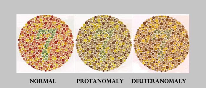 color vision test 2
