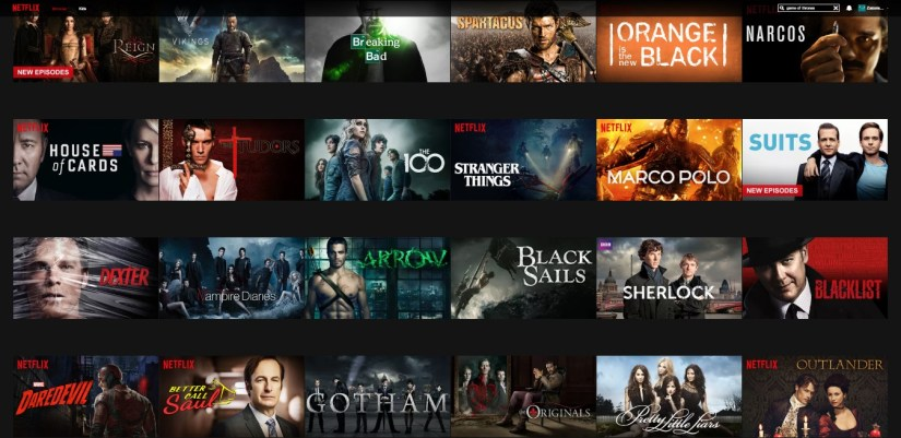 Some of the shows on Netflix