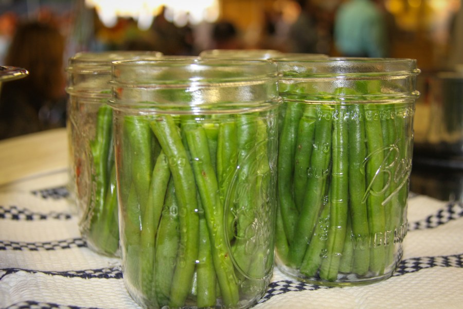 Dill Green Bean Canning Photo by April Sorrow