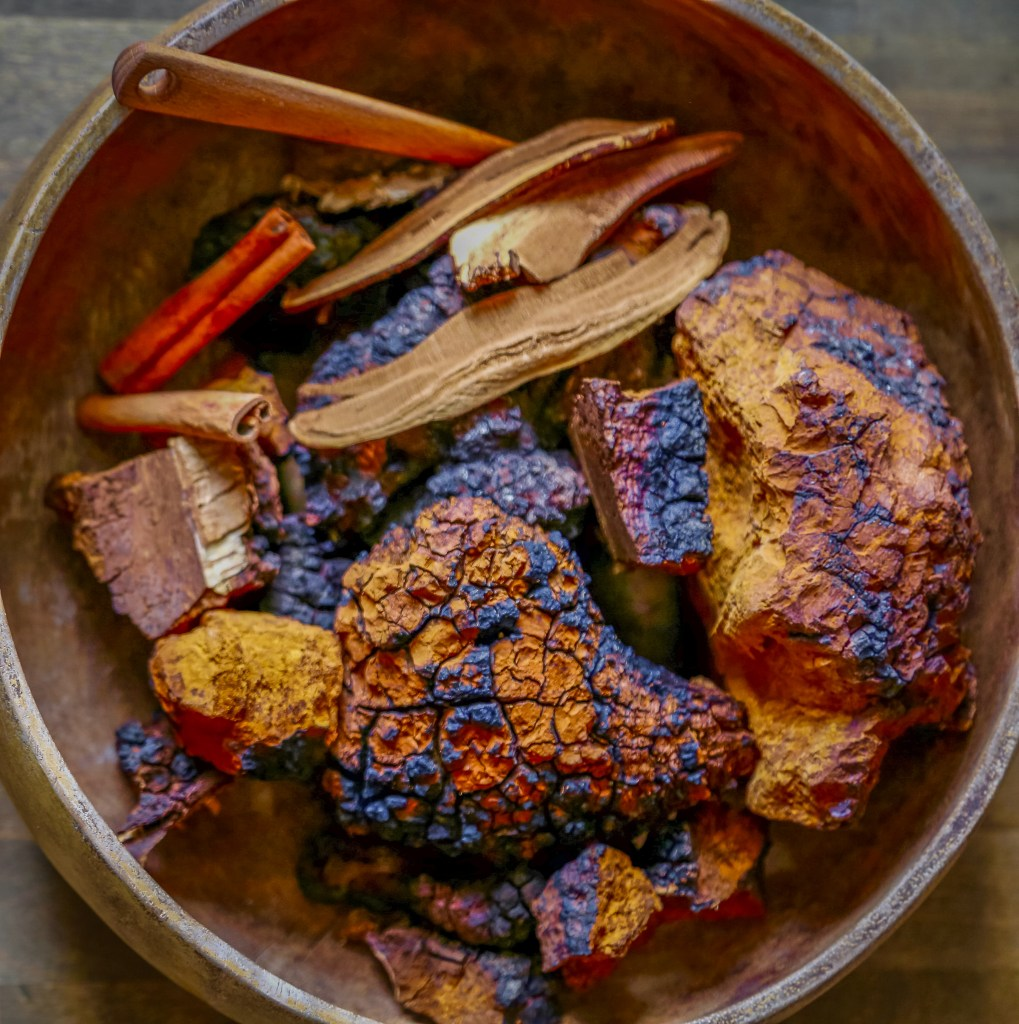 Photo of Chaga in a Bowl for Duluth Folk School Class