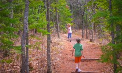 Duluth Folk School Art & Nature Camp