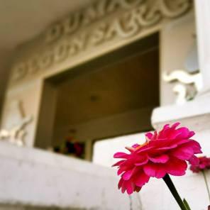 Antalya Düğün Mekanları - 0242 3450930 Duman Düğün Sarayı düğün salon fiyatları düğün yerleri ucuz düğün salonu (8)
