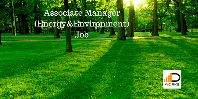 Associate Manger -Energy and Environment (1)
