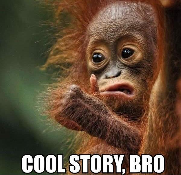 monkey meme for encapsulation java