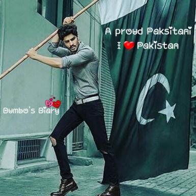 Patriotic boy with pakistani flag