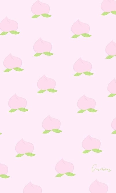 beautiful pink flowers whatsapp wallpaper