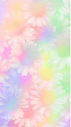 sunflowers multicolor whatsapp wallpaper