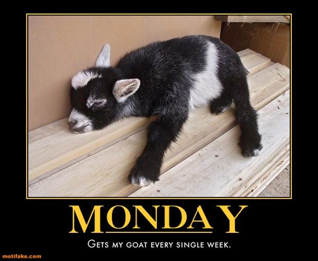 Funny Pictures About Monday That Help Get You Through