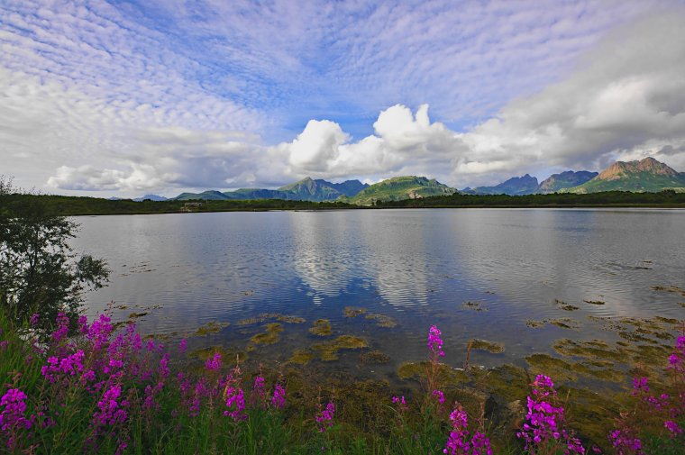 Eidsfjorden, Langoya Island, Vesteralen Archipelago, Norland County, Norway - ...behind every picture, there is a story...