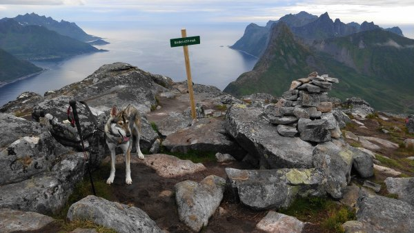 Northern Inuit on Barden (659m), Island of Senja, Troms og Finnmark, Norway - ...behind every picture, there is a story...