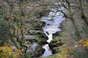 The Strid on the River Wharfe at Bolton Abbey, North Yorkshire, England