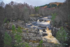 Black Water River, Near Garve, Ross and Cromarty, Scotland