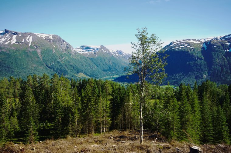 Byrkjelo, Vestland County, Norway - ...behind every picture, there is a story...