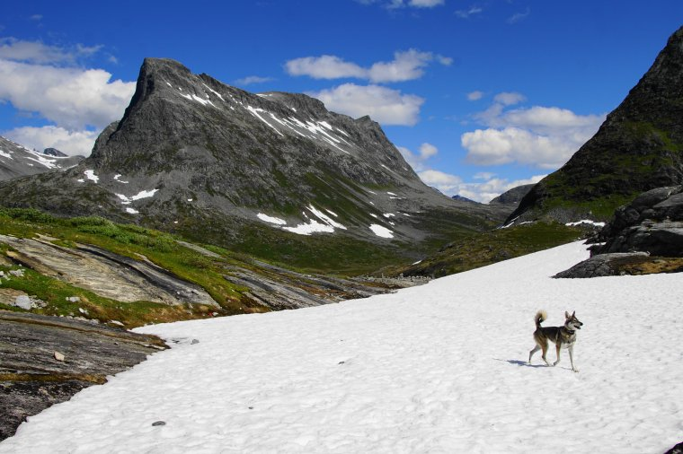 Vestre Stigbotthornet 1583m, Møre og Romsdal, Norway - ...behind every picture, there is a story...