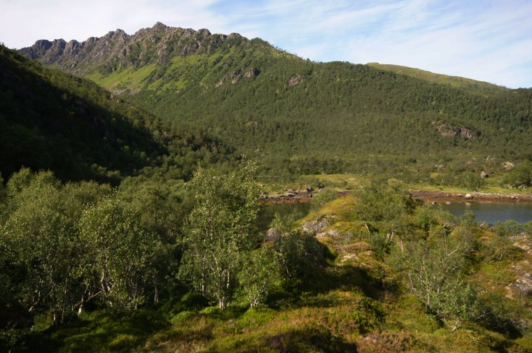 Lifjord, Langoya Island, Vesteralen Archipelago, Norland County, Norway - ...behind every picture, there is a story...