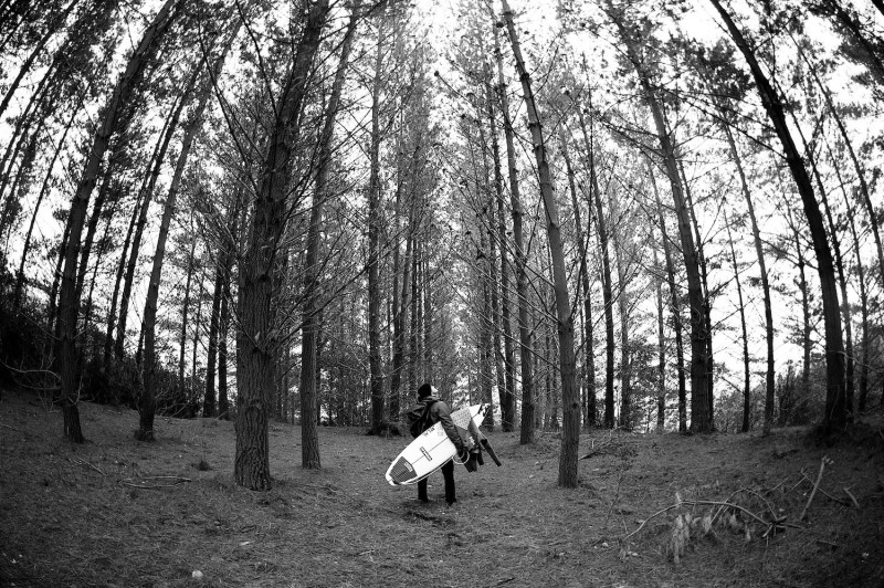 Forest, Black and white, Billabong, Adventure division, art, fine art, prints, surfing photography, Surf, wave, Duncan Macfarlane Photography, Duncan, Surfing, Surf, Photography, Duncanm, Surf Photography, Ryan Callinan, Chile, waves, Ocean, Duncan Macfarlane,