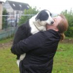 Bronte - a stray to the Louth County Pound - receiving cuddles from Barbara x