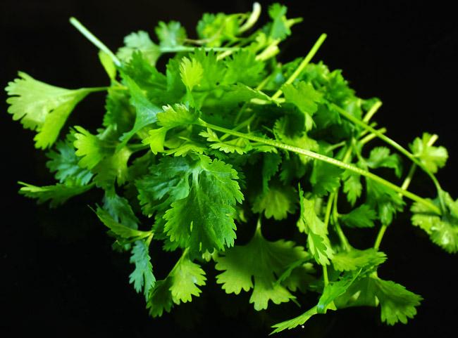 свежая зелень для томатного супа