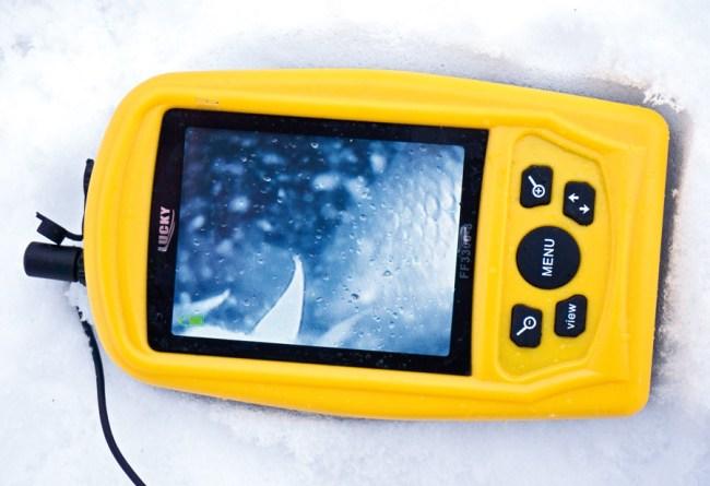 подводная камера фиксирует рыбу