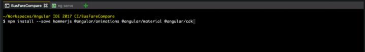 install npm modules