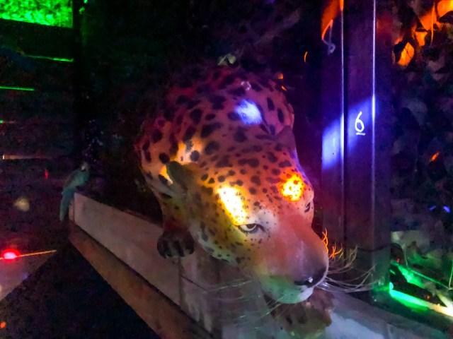 Prop Leopard
