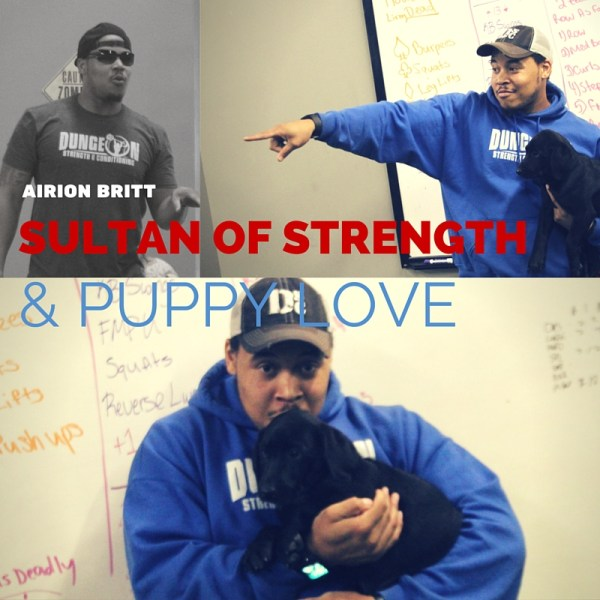 Airion Britt Twin Cities Trainer Sultan of Strength