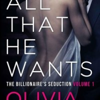 "MY REVIEW ABOUT ""THE BILLIONAIRE SEDUCTION"" BY OLIVIA THORNE"