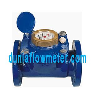 Water Meter Westechaus