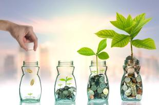 The Process of Venture Capital Investment - An Overview of the New Venture Capital Investment in Indonesia