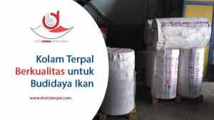 Harga Terpal Kolam Kediri, Madiun, Mojokerto, Malang