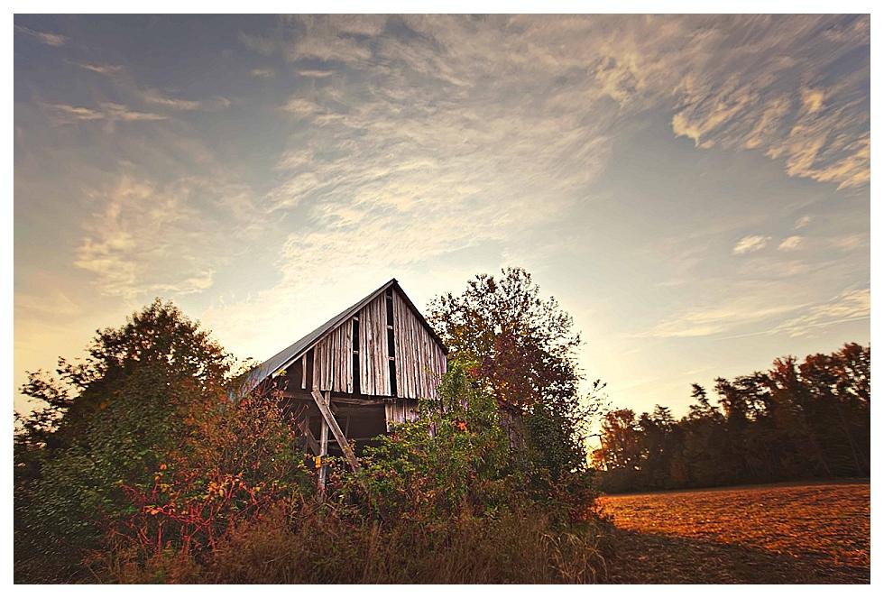 calvert county photographer (15)