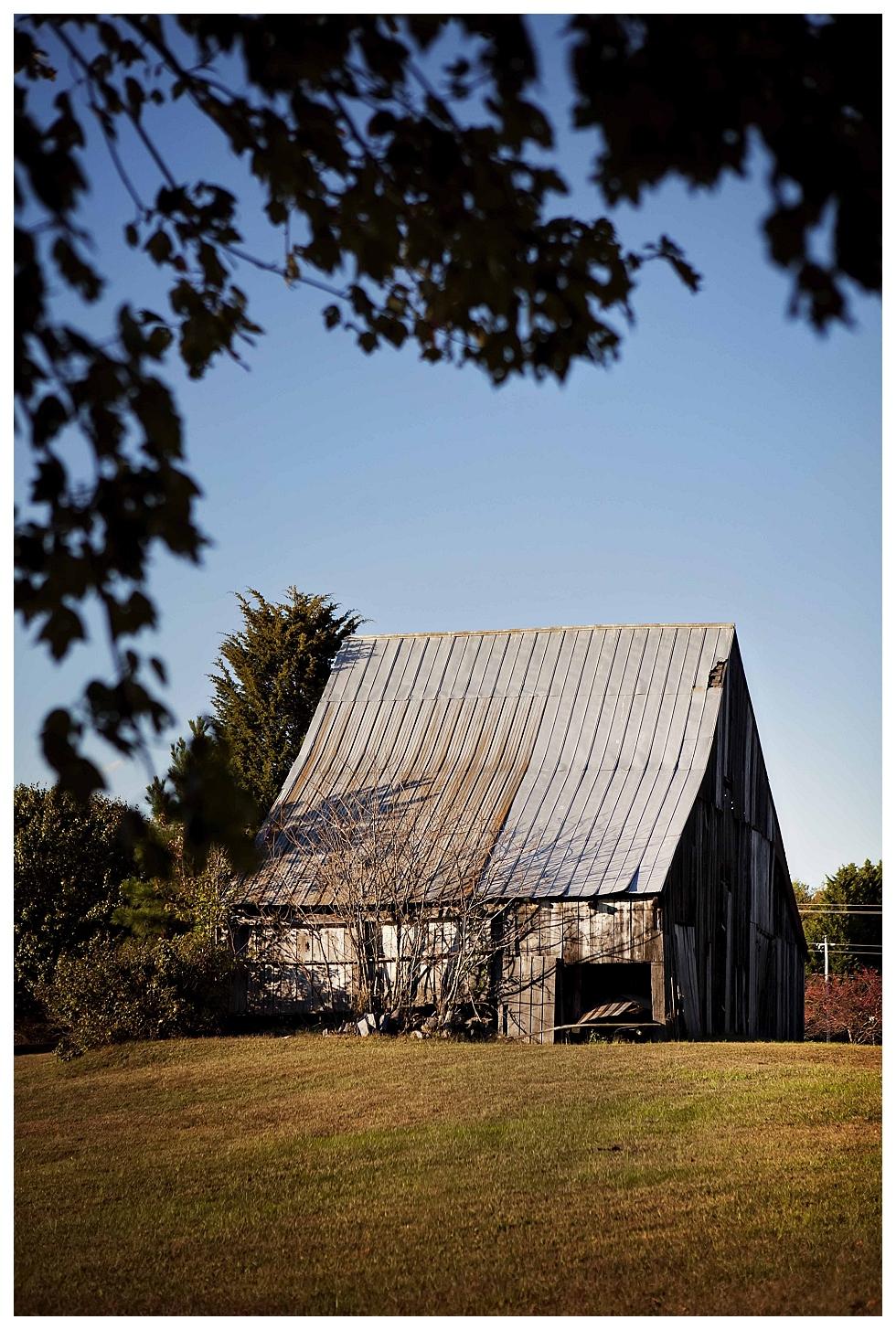 calvert county photographer (19)