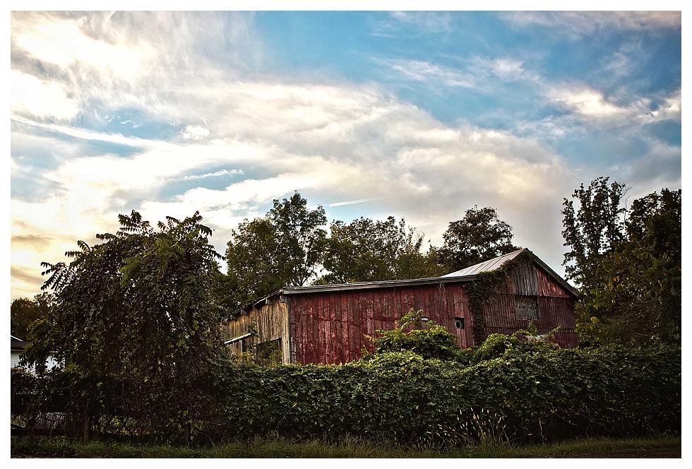 calvert county photographers (9)