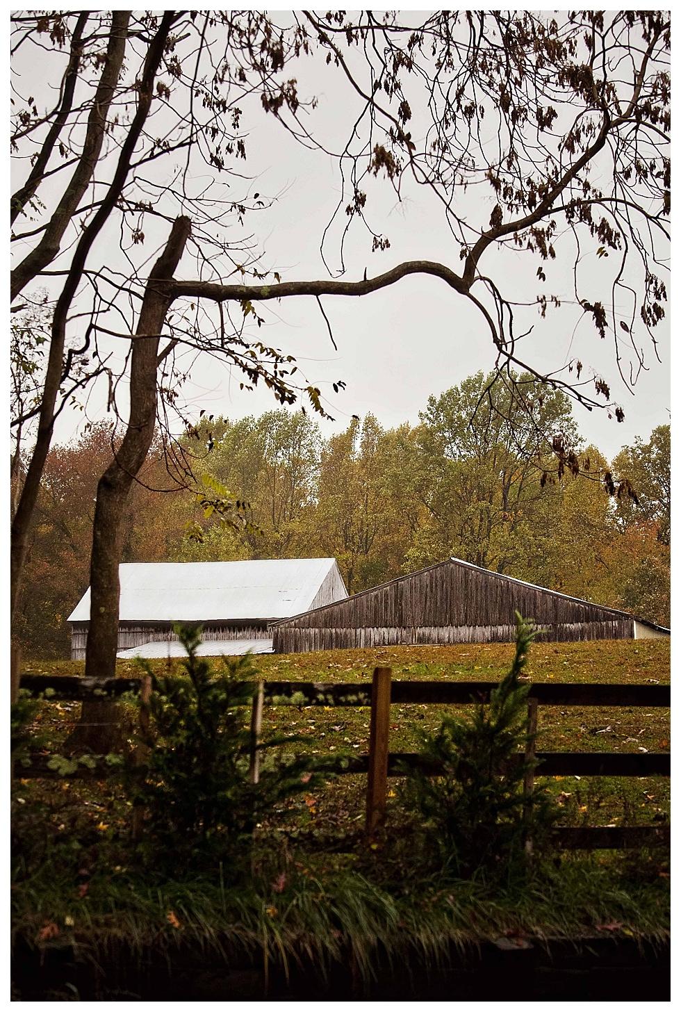 calvert county photography (2)