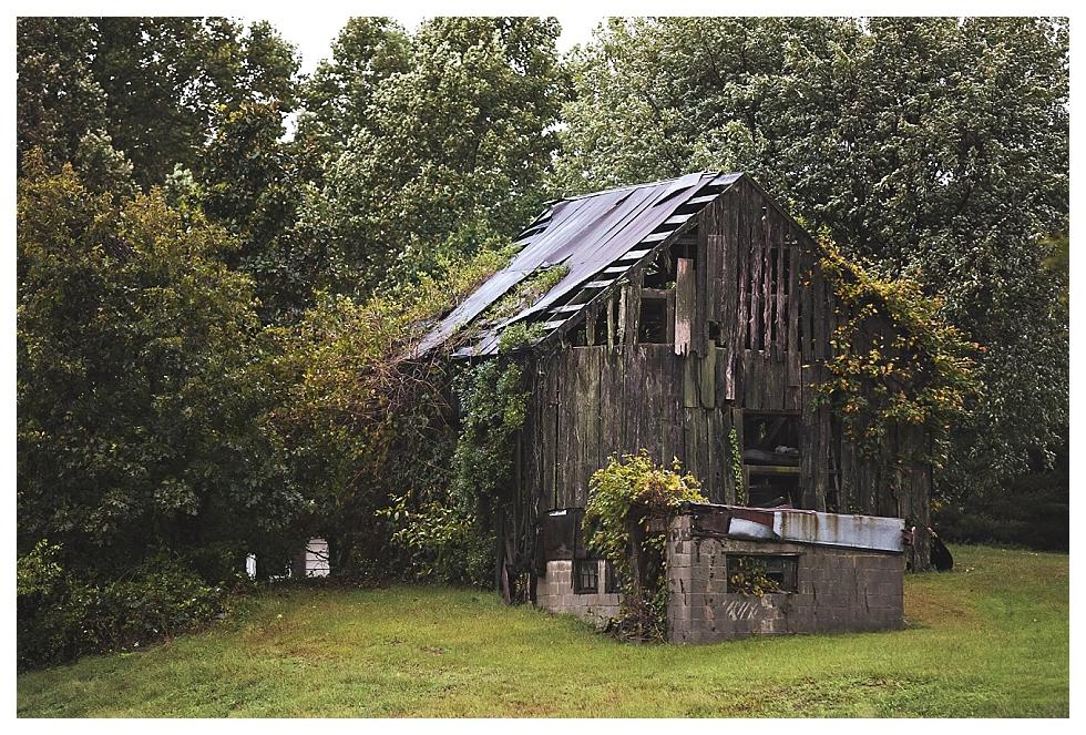 Southern Maryland Photographer (6)