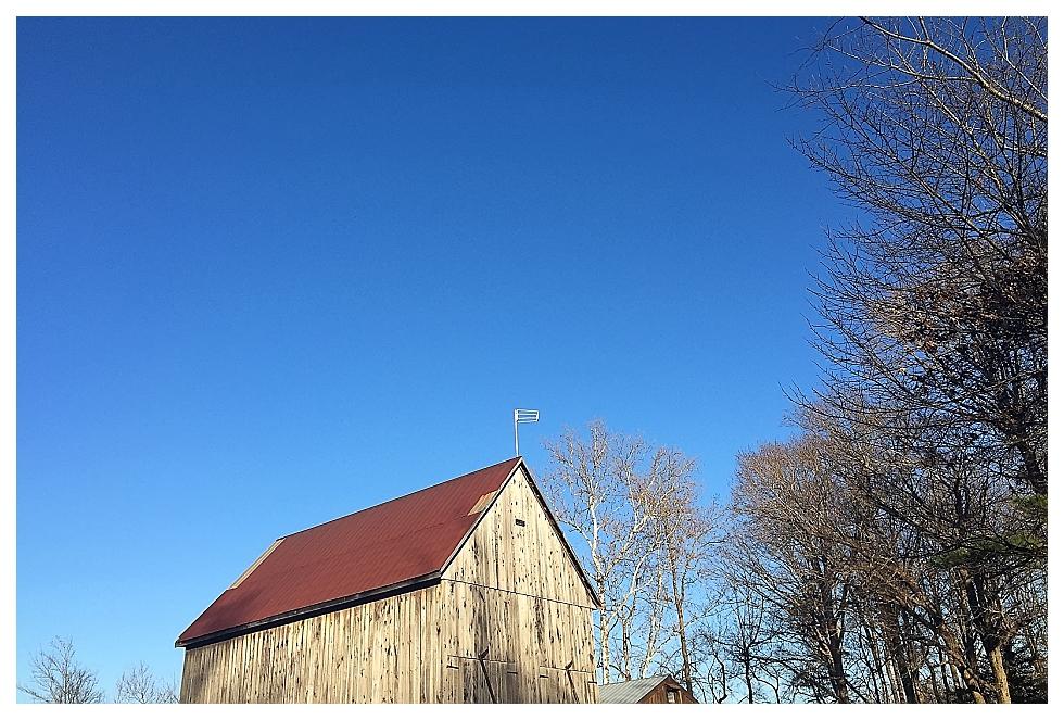 calvert county photographers (5)