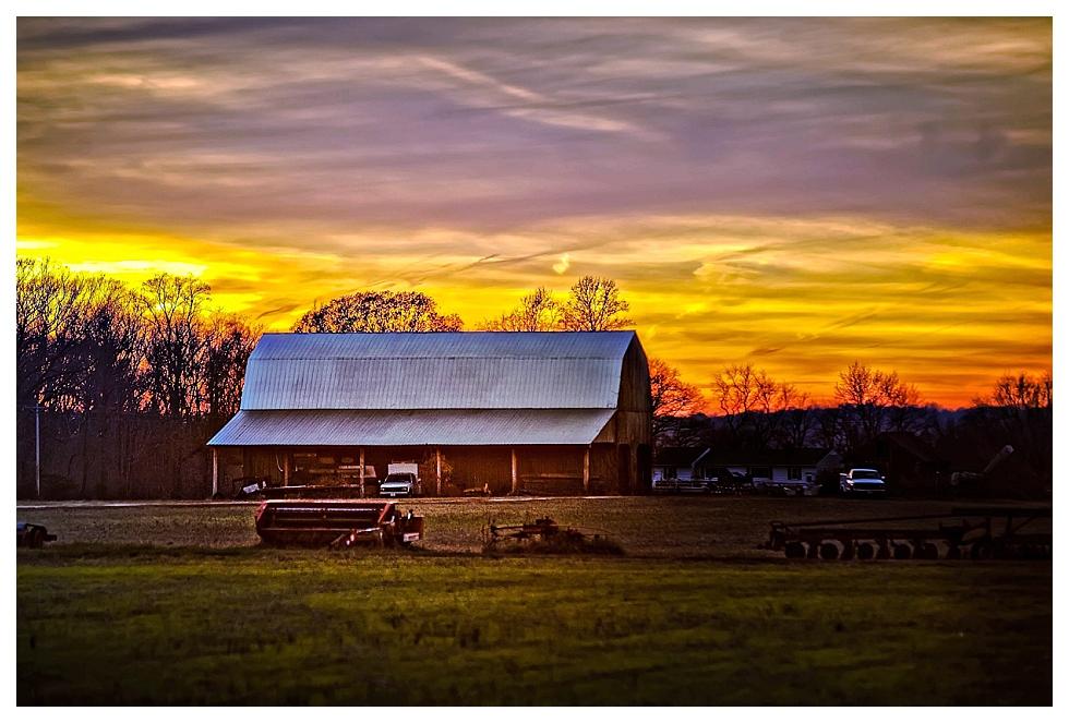 calvert county photographers (7)