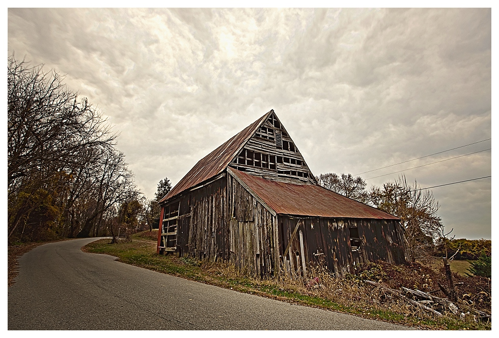 calvert county photographers (8)