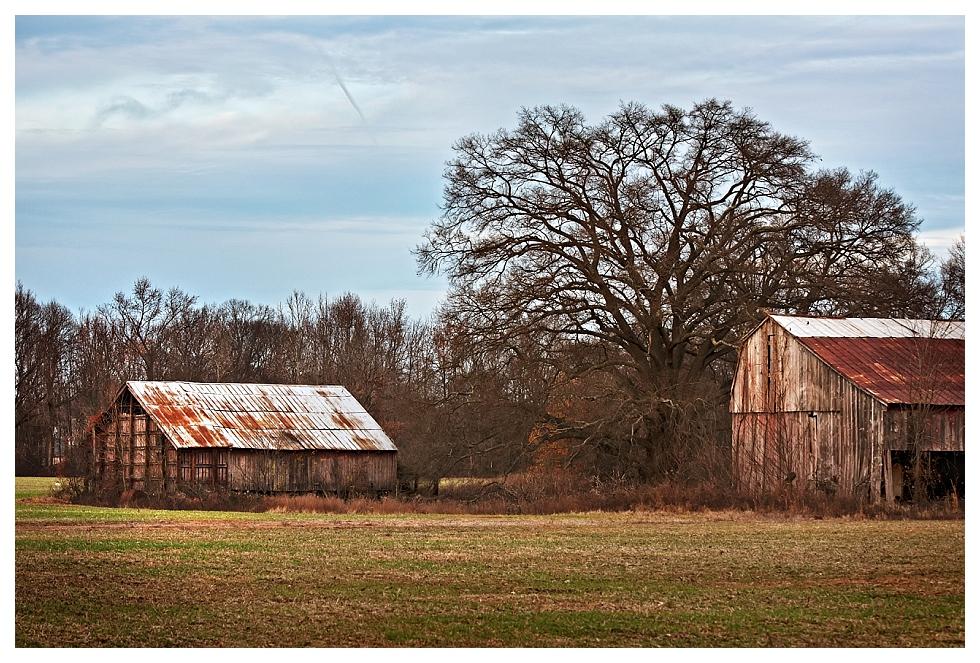 calvert county barns (2)