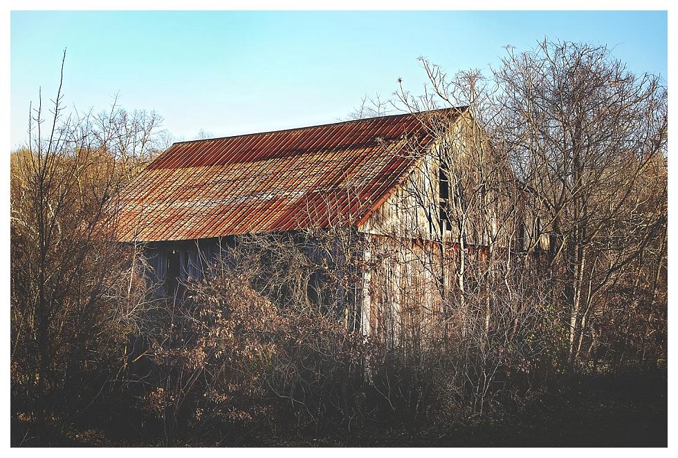 calvert county barns (5)