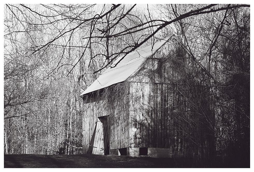 calvert county barns (7)