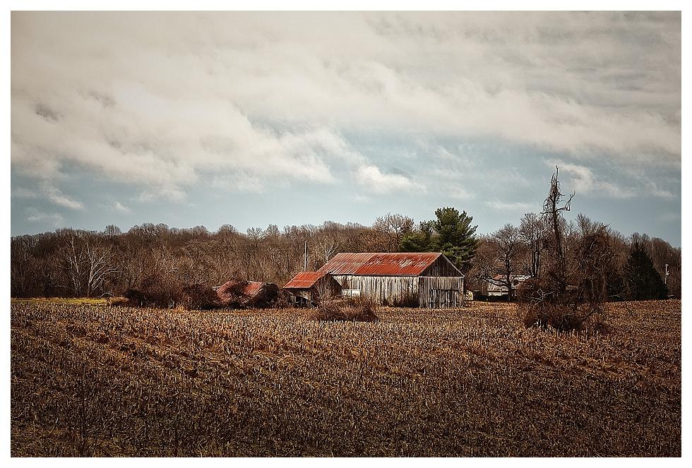 calvert county photos (5)