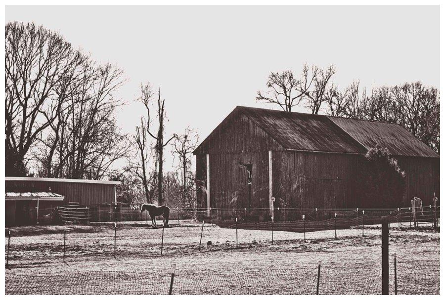 barns of calvert county-11