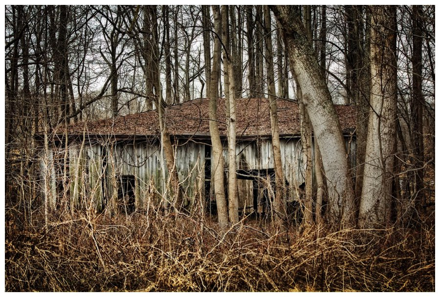 barns of calvert county-20
