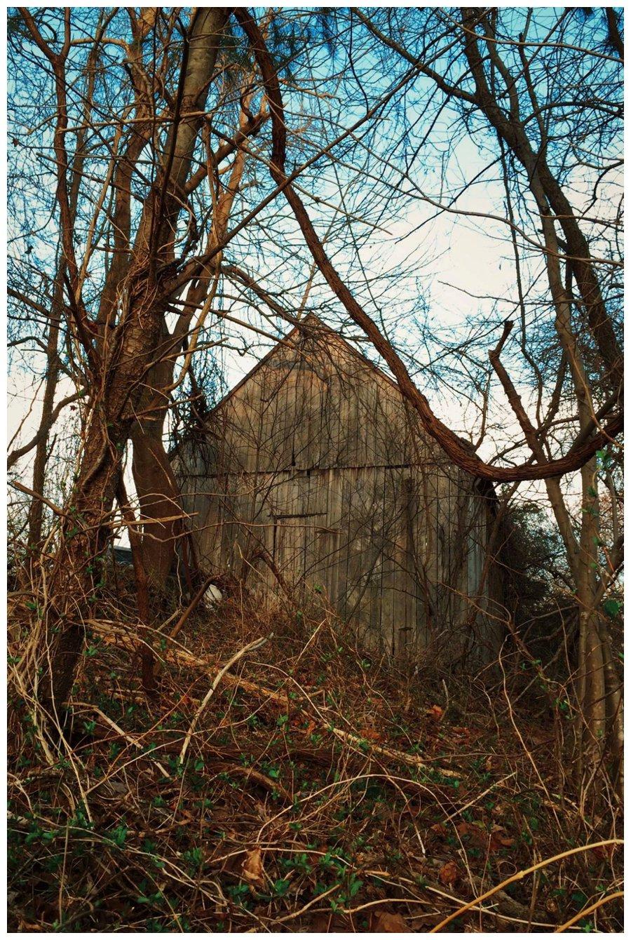 calvert county barns-12